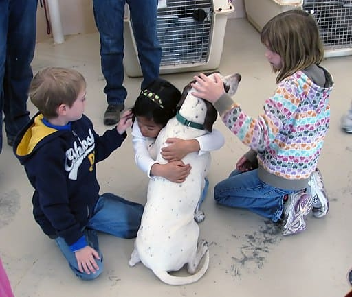 Service Animals in Schools:  A Primer