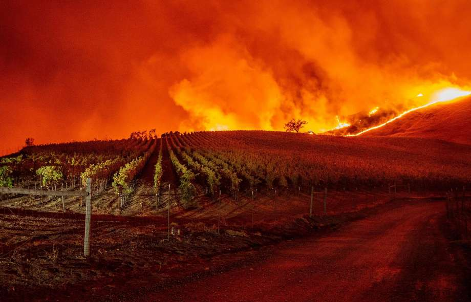 Letter from Sonoma County, CA:  Educators Responding to The Climate Crisis