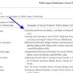 PUBLIC IMPACT SCHOLARSHIP & WHY WE DO IT:  SSWN Open Access 2020